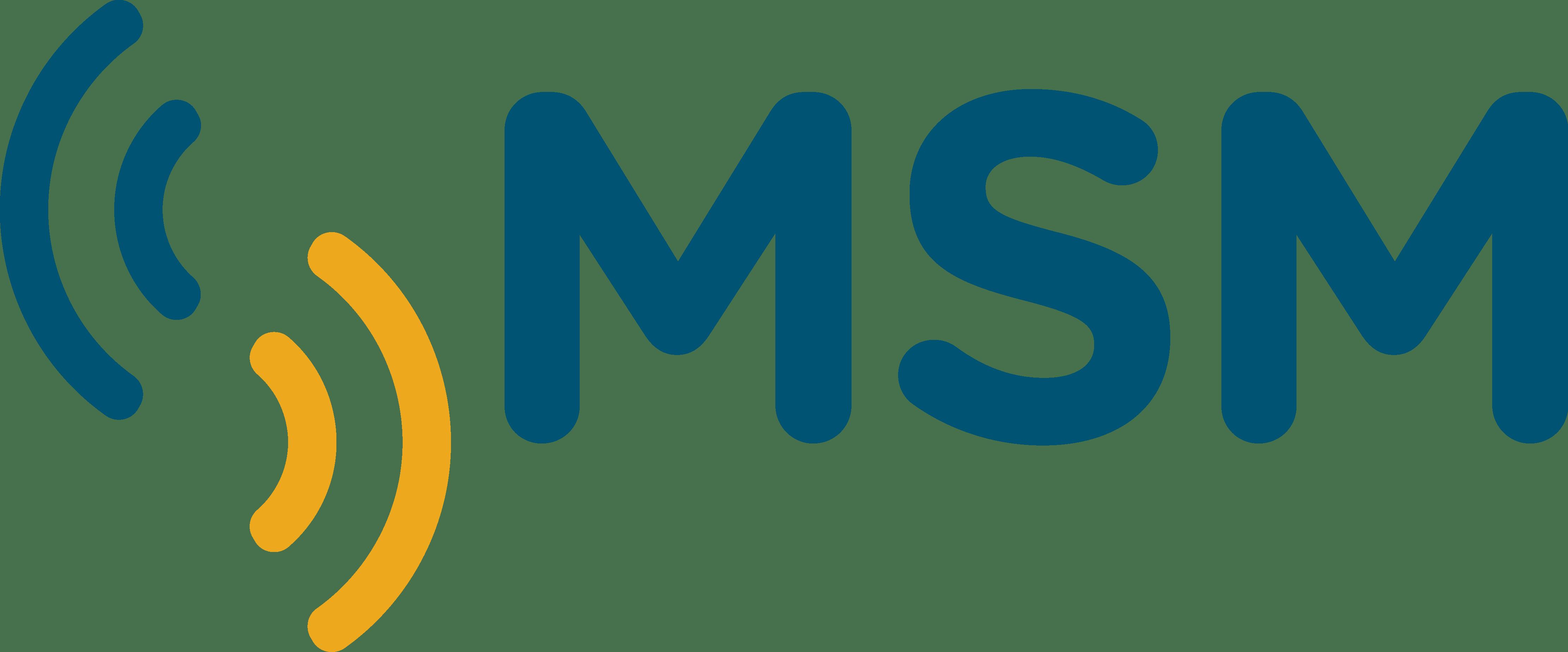 Soporte Técnico MsM